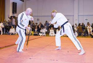 Jo & Bokken Kata in Pairs Demonstration - Lee Williams & Brian Hicks