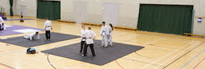 The Practice Mat - EBIRA Loughborough 2014