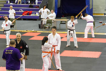 Sensei Grant Wakeman - Cane Master - - EBI Random Attacks - Loughborough 2014