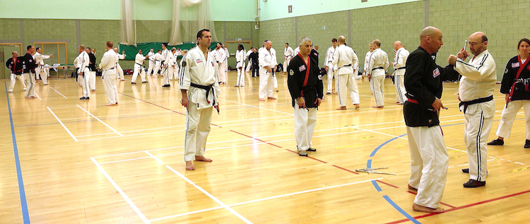 Jikishin Ko Budo (Weapons)  Seminar February 2014