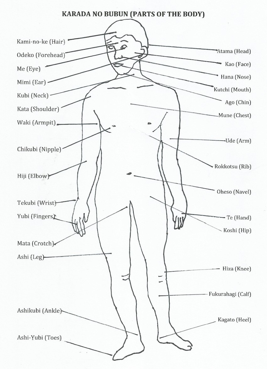 Japanese Martial Arts Terminology - Ju Jitsu - Parts of the Body